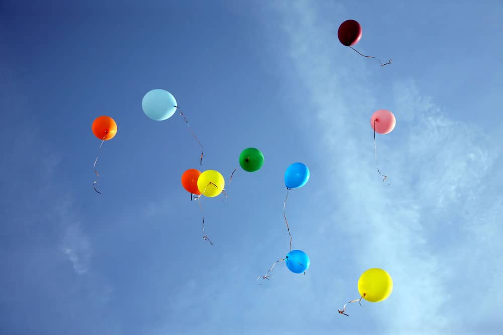 Rotterdam bans the release of balloons